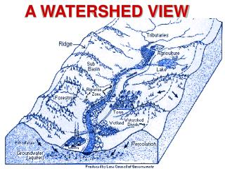 A WATERSHED VIEW