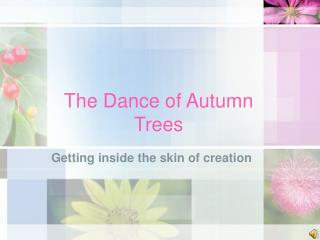 The Dance of Autumn Trees