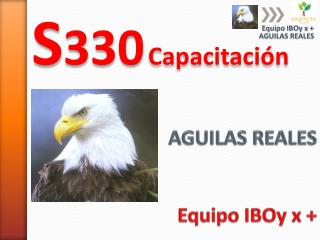 AGUILAS REALES Equipo IBOy x +