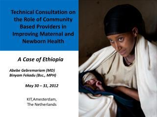 A Case of Ethiopia  Abebe Gebremariam (MD)  Binyam Fekadu ( Bsc ., MPH)