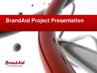BrandAid Project Presentation