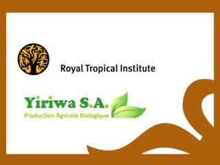 Unusual Business: The Case of Yiriwa S.A. Mali