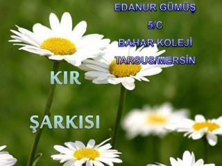 KIR ŞARKISI