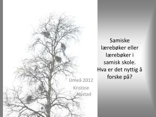 Samiske lærebøker eller lærebøker i samisk skole. Hva er det nyttig å forske på?