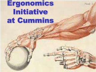 Ergonomics  Initiative at Cummins