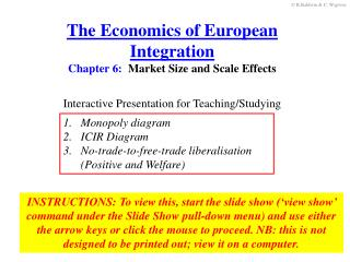 The Economics of European Integration Chapter  6 :   Market Size and Scale Effects
