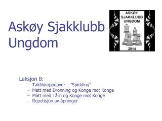 Askøy Sjakklubb  Ungdom