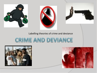 Explaining Crime and Deviance