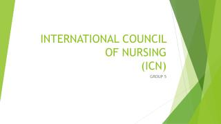 INTERNATIONAL COUNCIL OF NURSING (ICN)