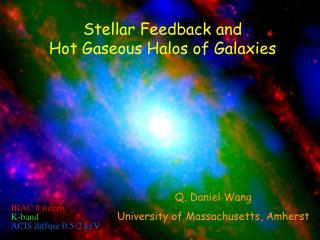 Stellar Feedback  and  Hot Gaseous Halos of Galaxies