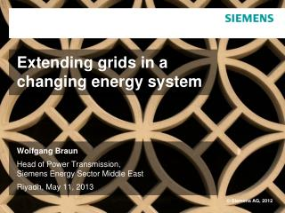 Extending grids in a  changing energy system