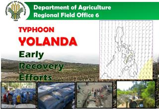 TYPHOON  YOLANDA Early Recovery Efforts