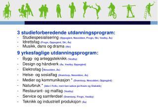 3  studieforberedende utdanningsprogram: