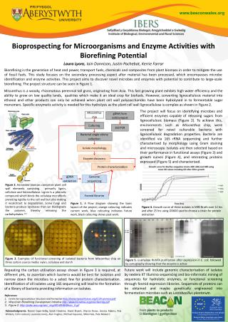 Bioprospecting for Microorganisms and Enzyme Activities with Biorefining Potential