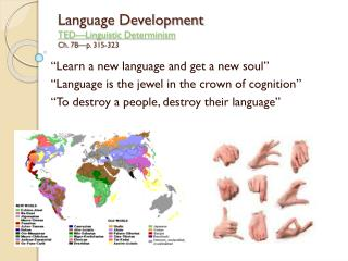 Language Development TED�Linguistic Determinism Ch. 7B�p. 315-323