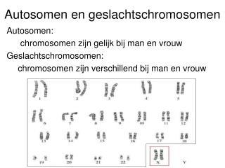 Autosomen en geslachtschromosomen