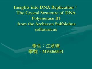Overall Description of the Sso DNApol Molecule