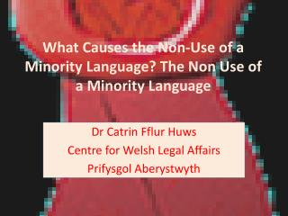 What Causes the Non-Use of a Minority Language? The Non Use of a Minority Language