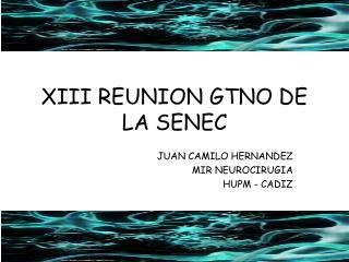 XIII REUNION GTNO DE LA SENEC