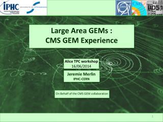 Large Area GEMs : CMS GEM Experience