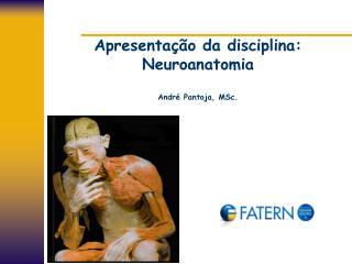 Apresentação da disciplina: Neuroanatomia André Pantoja, MSc.