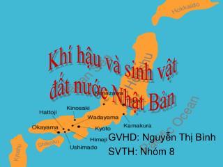 GVHD: Nguyễn Thị Bình SVTH: Nhóm 8
