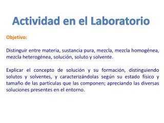 Actividad en el Laboratorio