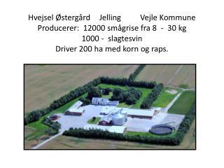 2 andre ejendomme. 425 SPF søer   -  ESF BoPil   -   Prod.12000 smågrise