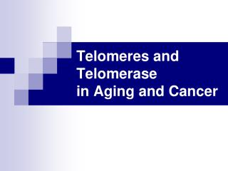 Telomeres and Telomerase  in Aging and Cancer