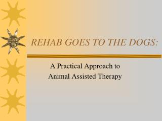 REHAB GOES TO THE DOGS: