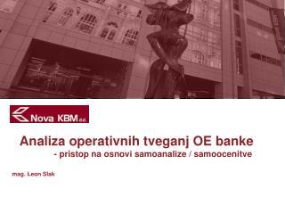 Analiza operativnih tveganj OE banke - pristop na osnovi samoanalize / samoocenitve