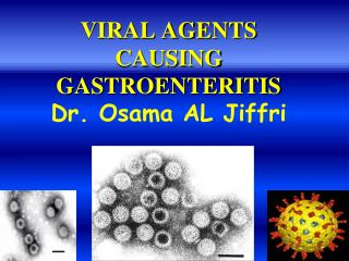VIRAL AGENTS CAUSING GASTROENTERITIS Dr. Osama AL Jiffri