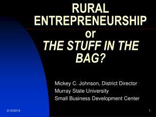 RURAL ENTREPRENEURSHIP or THE STUFF IN THE BAG