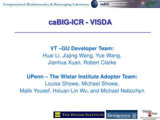 caBIG-ICR - VISDA