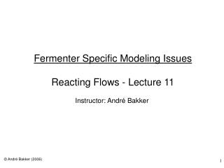 Fermenter Specific Modeling Issues   Reacting Flows - Lecture 11