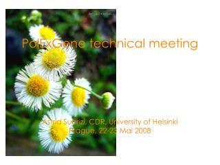 PolExGene technical meeting