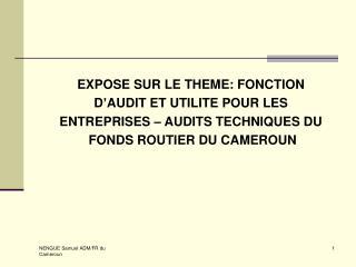 EXPOSE SUR LE THEME: FONCTION  D'AUDIT ET UTILITE POUR LES  ENTREPRISES – AUDITS TECHNIQUES DU