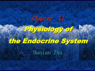 Chapter  11 Physiology of  the Endocrine System Danian Zhu