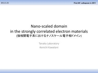 Nano -scaled domain in the strongly correlated electron materials ( 強相関電子系におけるナノスケール電子相ドメイン )