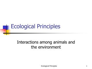 Ecological Principles