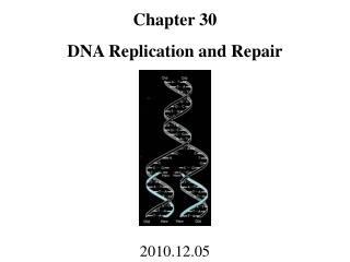 Chapter 30 DNA Replication and Repair 2010.12.05
