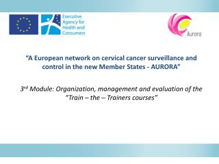"3 rd  Module: Organization, management and evaluation of the  ""Train – the – Trainers courses"""