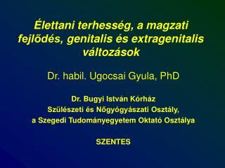 Élettani terhesség,  a magzati fejlődés,  genitalis és extragenitalis változások