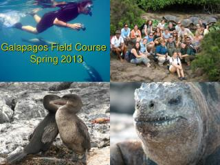 Galapagos Field Course   Spring 2013