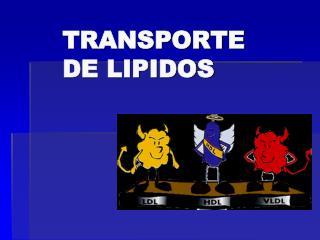 TRANSPORTE DE LIPIDOS