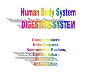Human Body System DIGESTIVE SYSTEM