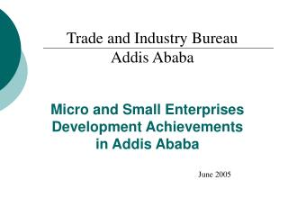 Micro and Small Enterprises Development Achievements  in Addis Ababa