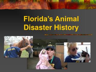 Florida's Animal  Disaster History
