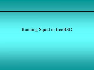 Running Squid in freeBSD