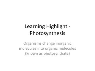 Learning Highlight - Photosynthesis